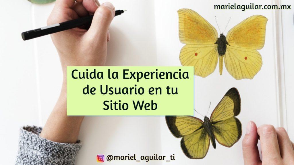 experiencia_usuario